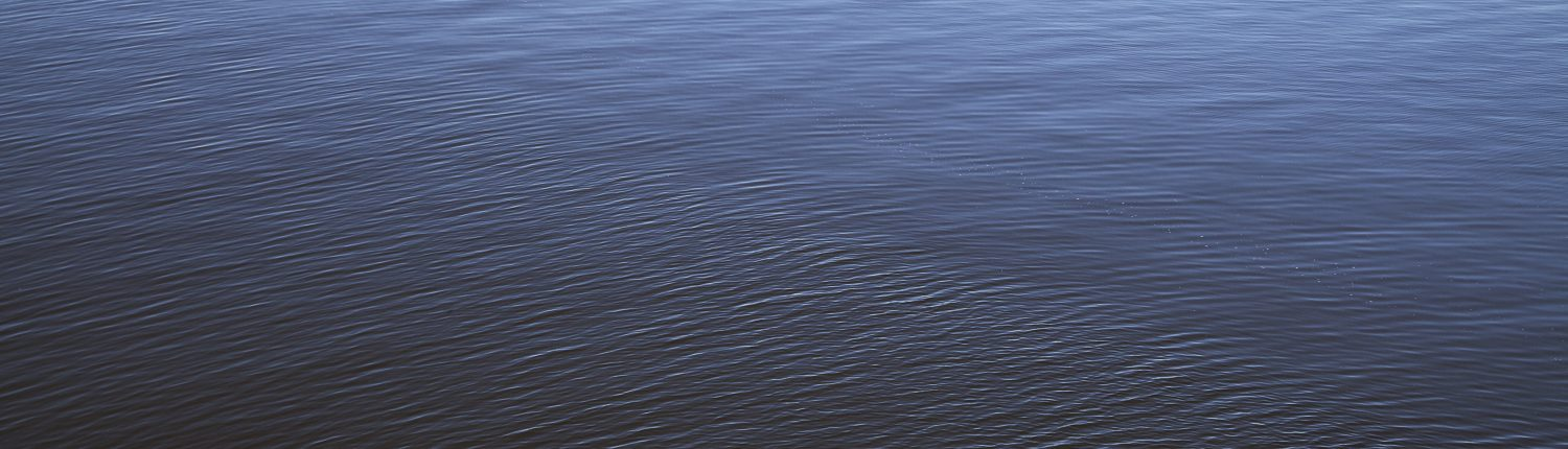 Small waves ripple across the surface of a body of water