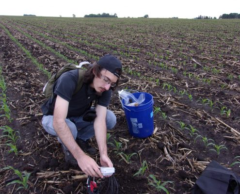 A male student crouches in a field of new crops as part of a soil moisture research project.