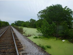 Flooding along the railroad tracks in Fredonia